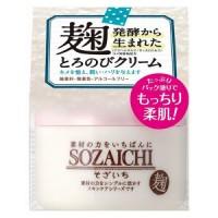 SOZAICHI MELTING CREAM / Крем увлажняющий для ухода за кожей лица, шеи и декольте