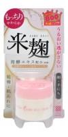 Увлажняющий крем с экстрактом ферментированного риса